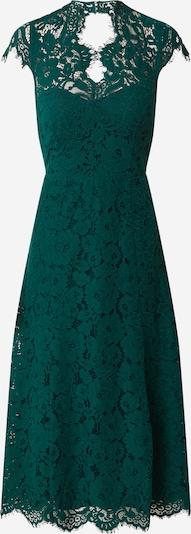 IVY & OAK Kleid 'Lace' in dunkelgrün, Produktansicht