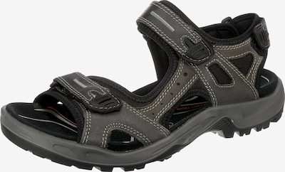 Sandale trekking ECCO pe gri / negru, Vizualizare produs