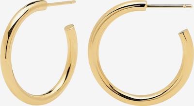 P D PAOLA Oorbellen 'AR CORE' in de kleur Goud, Productweergave