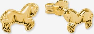 AMOR Ohrstecker 'Pferd' in gold, Produktansicht