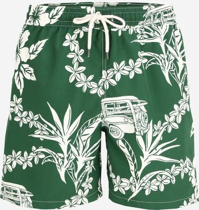 POLO RALPH LAUREN Szorty kąpielowe 'Traveler' w kolorze zielony / białym, Podgląd produktu