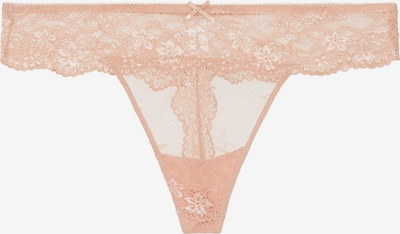 LingaDore String 'DAILY LACE' in apricot, Produktansicht