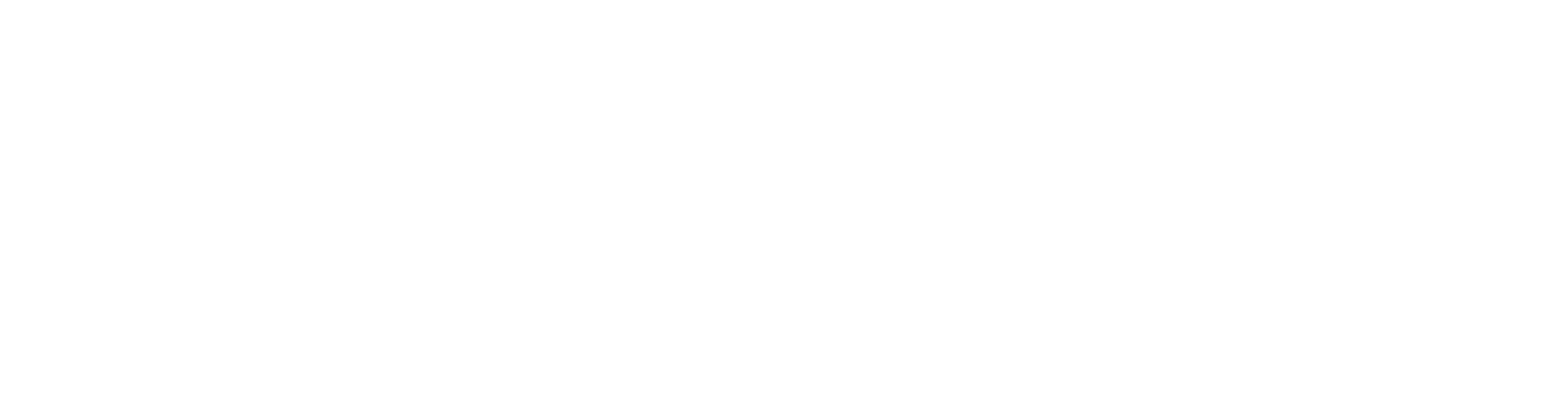 VENICE BEACH Logo