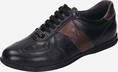 Galizio Torresi Schnürschuhe in braun / schwarz, Produktansicht
