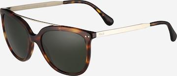 Polo Ralph Lauren Sunglasses in Brown