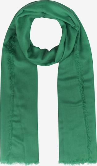 CODELLO Schal 'Basics' in grün: Frontalansicht