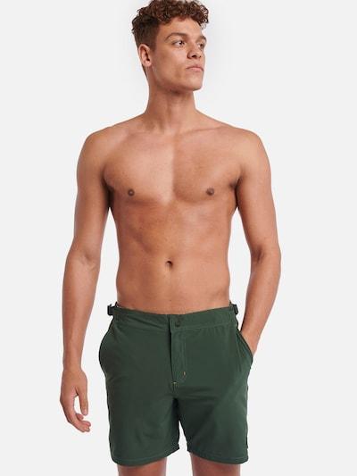 Shiwi Kalhoty - světle zelená, Model/ka