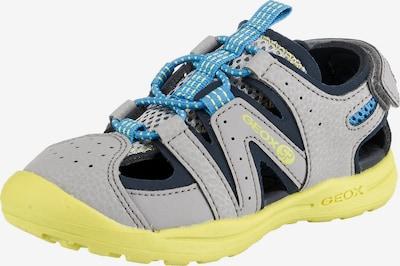 GEOX Kids Sandale 'Vaniette Boy' in hellblau / grau, Produktansicht