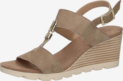 CAPRICE Sandaletten in hellbeige / dunkelbeige / weiß, Produktansicht