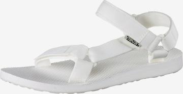 TEVA Sandals in White