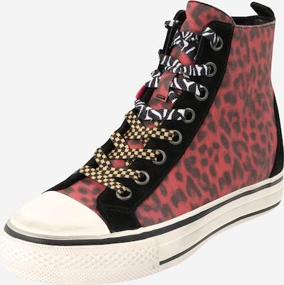 ASH Sneaker 'Genial Punk' in pastellrot / schwarz / schwarzmeliert, Produktansicht