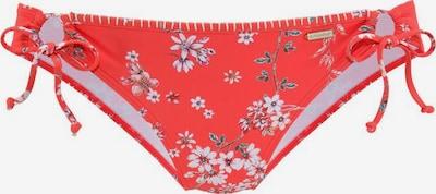 SUNSEEKER Bikini-Hose 'Ditsy' in mischfarben / orangerot, Produktansicht