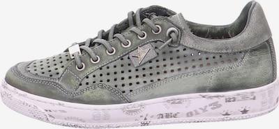 Cetti Schnürschuhe in grau / hellpink, Produktansicht
