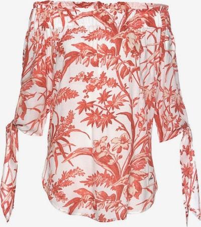 ZABAIONE Bluse 'Kareen' in pastellrot / weiß, Produktansicht