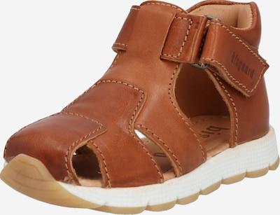 BISGAARD Schuhe 'Aria' in cognac, Produktansicht