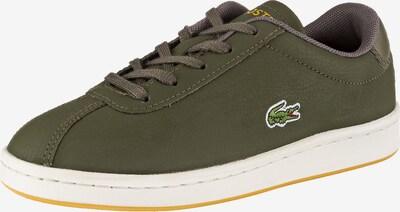 LACOSTE Sneakers in grün, Produktansicht