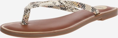 BUFFALO Zehentrenner  'OY' in beige / grau, Produktansicht