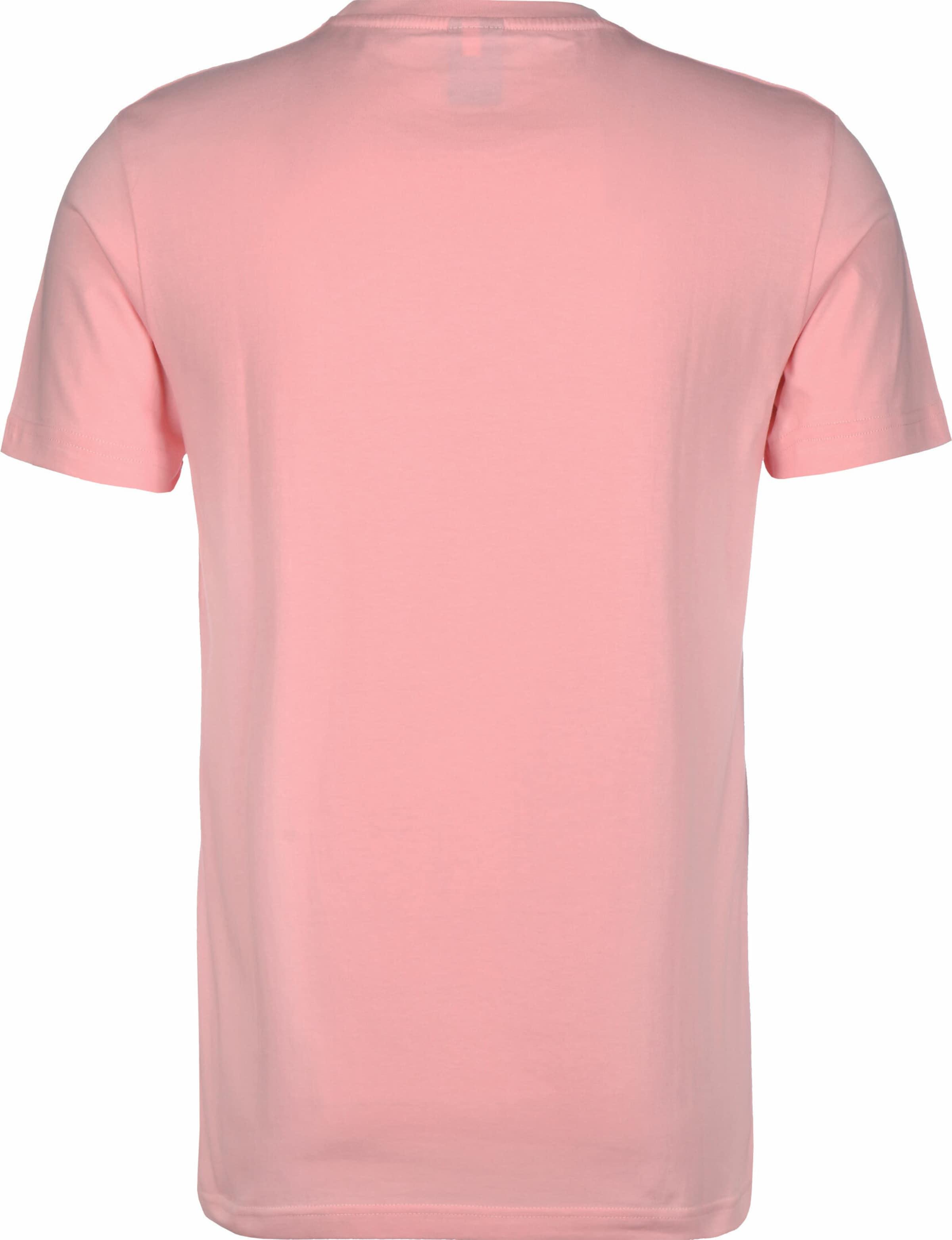 Iriedaily T-Shirt ' Out for Beach ' in pink Motivprint KT23606021