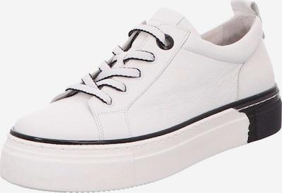 GABOR Sneaker in schwarz / weiß, Produktansicht
