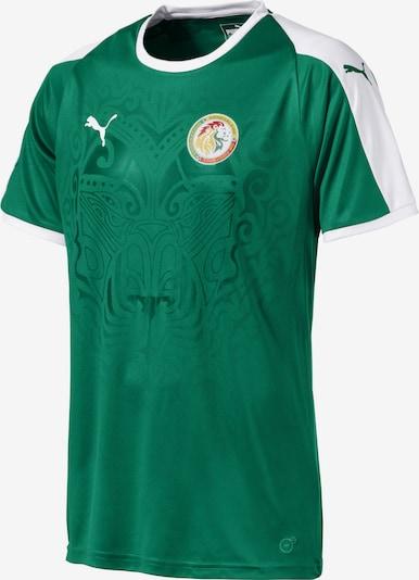 PUMA Tricot 'Senegal' in de kleur Smaragd / Wit, Productweergave