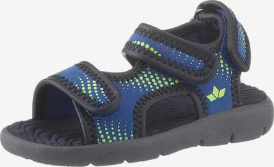 LICO Sandale in blau / limone / schwarz, Produktansicht