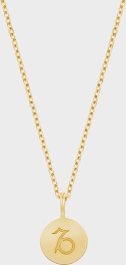 ID Fine Halskette 'Steinbock' in gold, Produktansicht