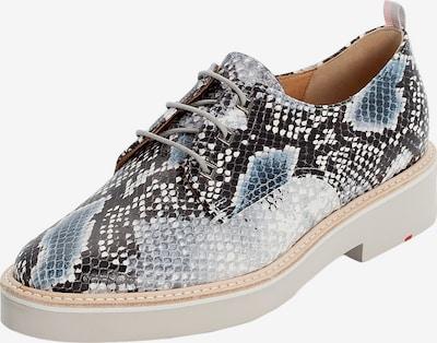 LLOYD Schuhe mit Animalmuster in beige / blau, Produktansicht