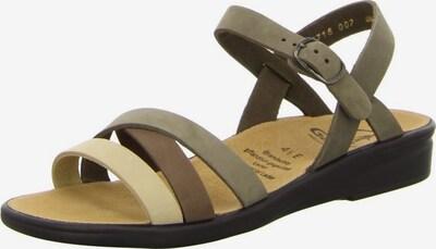 Ganter Sandalen met riem in de kleur Crème / Donkerbruin / Kaki, Productweergave