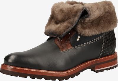 DANIEL HECHTER Stiefel in schwarz, Produktansicht