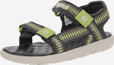 TIMBERLAND Sandale in grau, Produktansicht