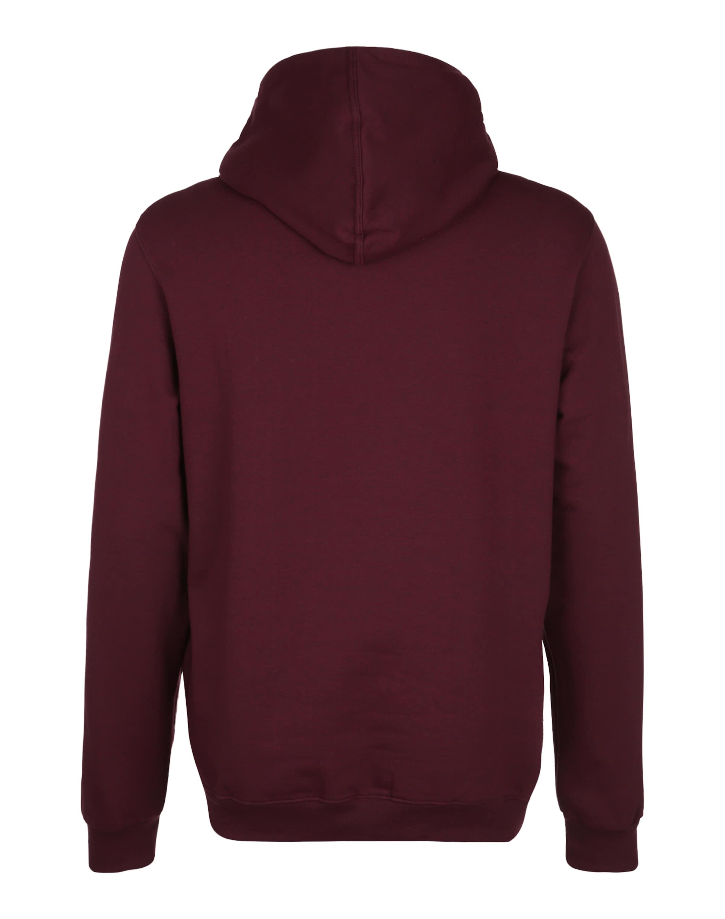 Auslass Gut Verkaufen Ausgezeichnet Iriedaily Kapuzen-Sweatshirt 'Daily Flag' Zum Verkauf Footlocker Verkauf Hochwertige dHYeV