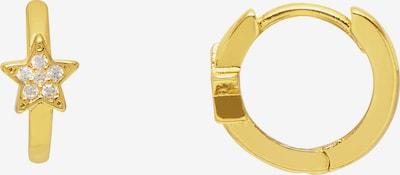 Estella Bartlett Kolczyki w kolorze złotym, Podgląd produktu