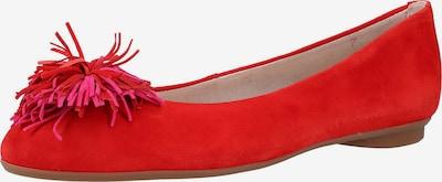 Paul Green Ballerina in rot, Produktansicht