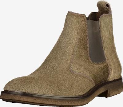LLOYD Chelsea Boots en beige, Vue avec produit