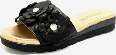 CAPRICE Pantolette in schwarz, Produktansicht