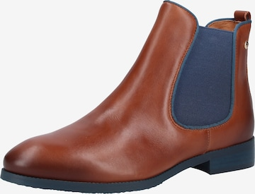 PIKOLINOS Chelsea Boots 'Royal' in Brown