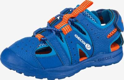 GEOX Kids Sandale 'Vaniette Boy' in blau / neonorange, Produktansicht