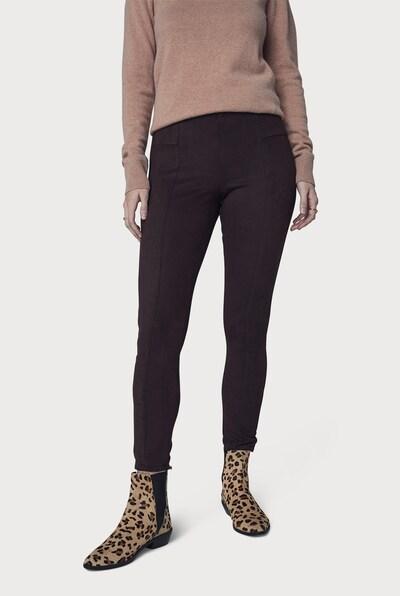 Long Tall Sally Hose für große Frauen in braun, Modelansicht