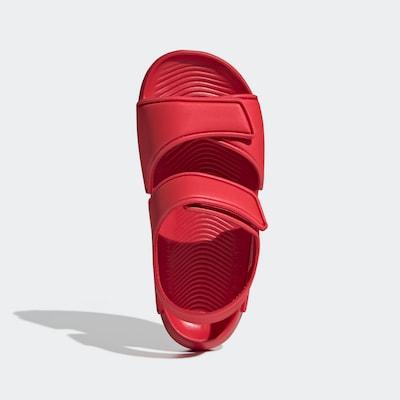 ADIDAS PERFORMANCE Strand-/badschoen in de kleur Rood / Wit, Productweergave
