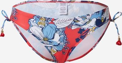 ESOTIQ Dół bikini 'MADEIRA' w kolorze niebieski / czerwonym, Podgląd produktu