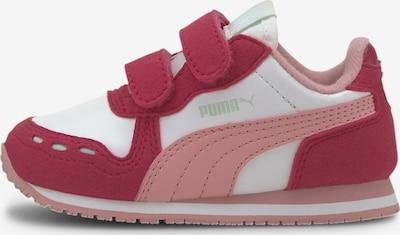 rózsaszín / sötét-rózsaszín / fehér PUMA Sportcipő 'Cabana Racer SL', Termék nézet