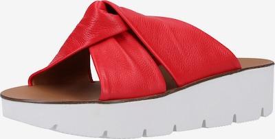 Paul Green Pantolette in rot, Produktansicht
