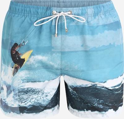 BOSS Plavecké šortky 'Springfish' - modrá: Pohled zepředu