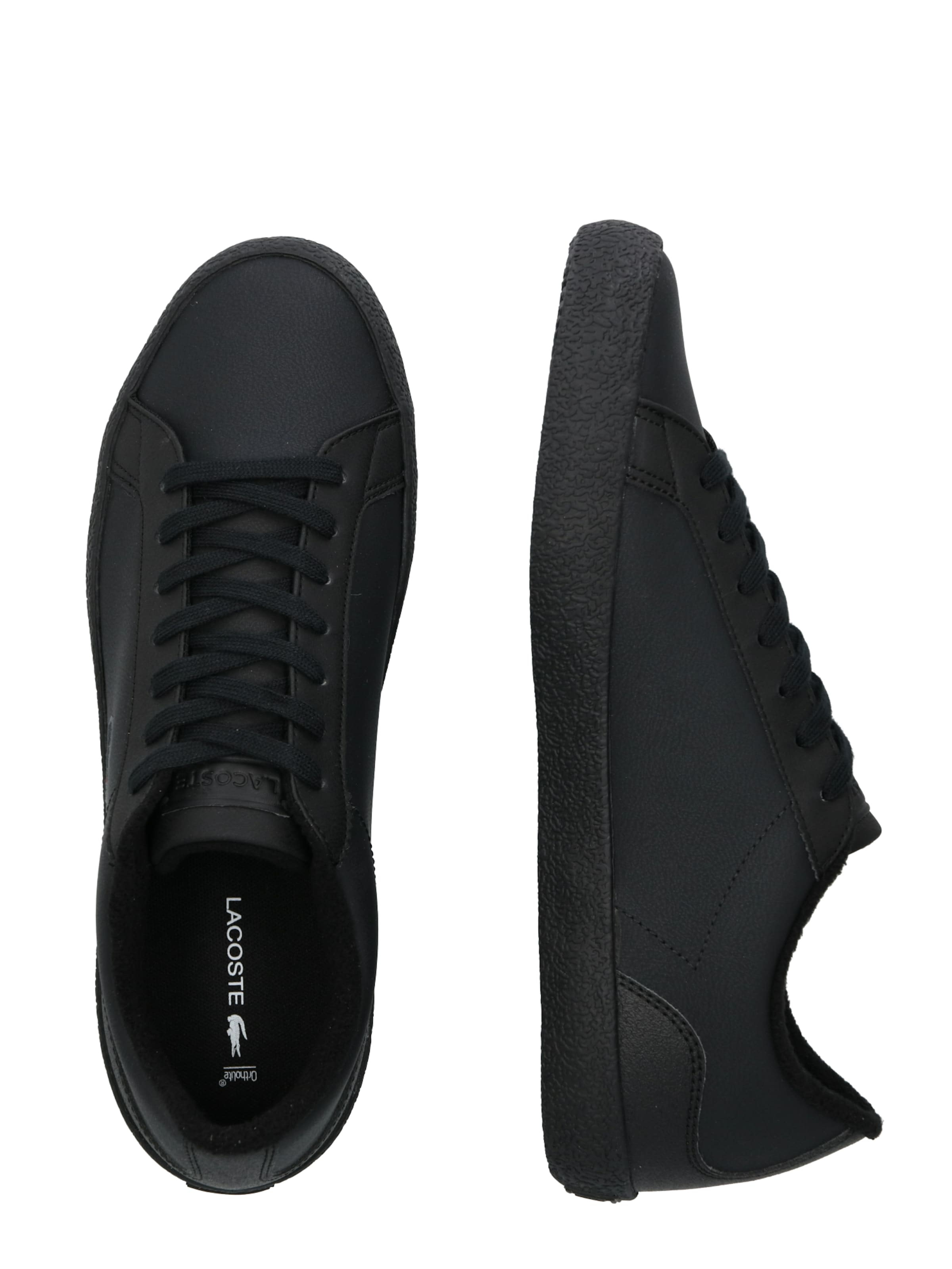 319 Cma' Schwarz Lacoste Sneaker 'lerond 6 In uJTKcF1l3