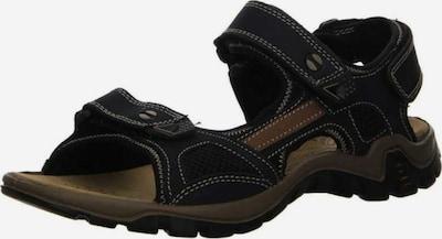 SALAMANDER Sandalen in de kleur Kobaltblauw / Bruin, Productweergave