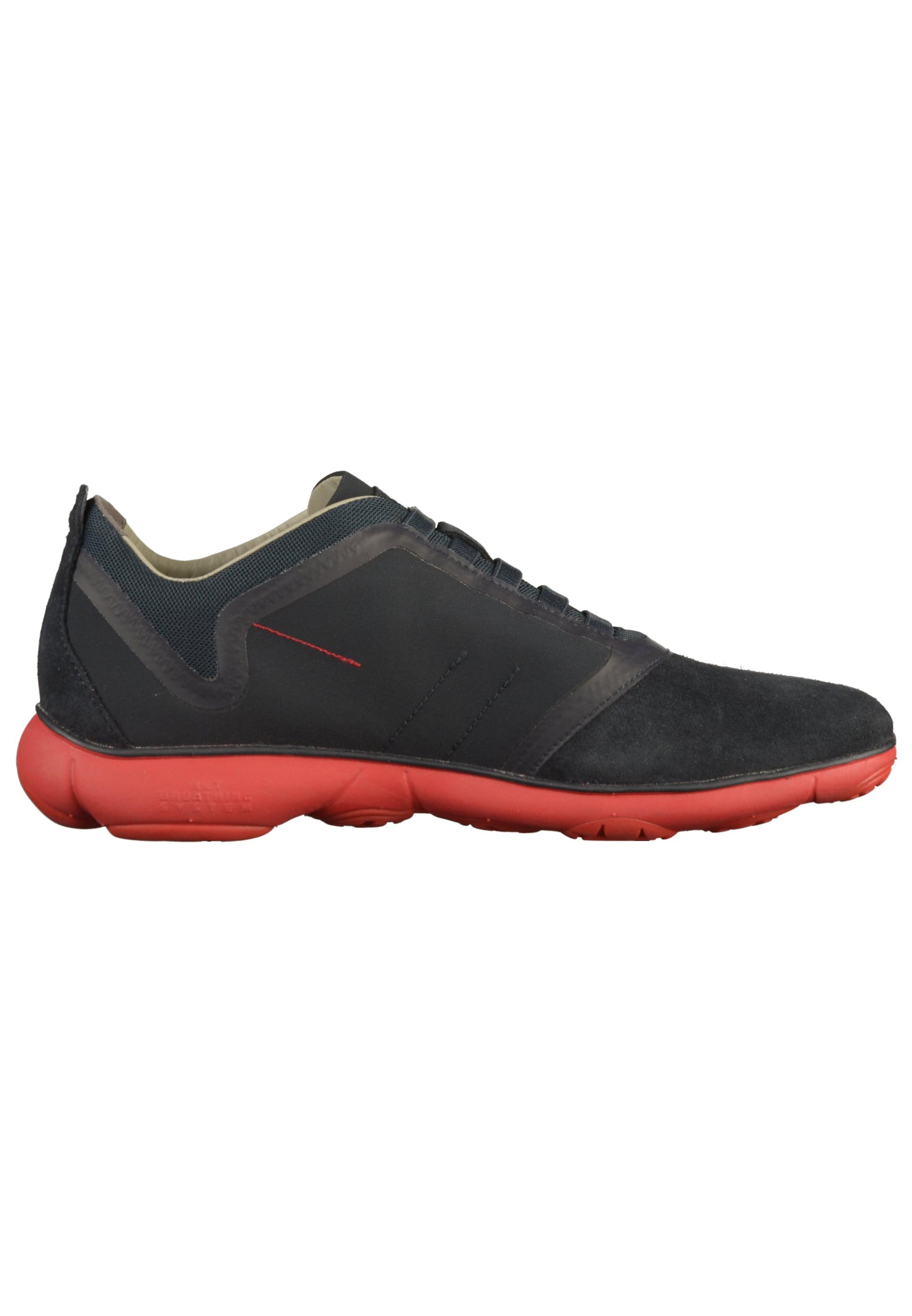 NachtblauRot Sneaker Geox In Sneaker Geox NachtblauRot In rdQCxthsB
