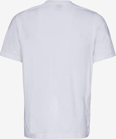 DICKIES T-Shirt im 3er Pack in weiß: Rückansicht