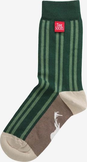 Tag SOCKS Socken 'Stars & Stripes' in beige / grün / hellgrün, Produktansicht