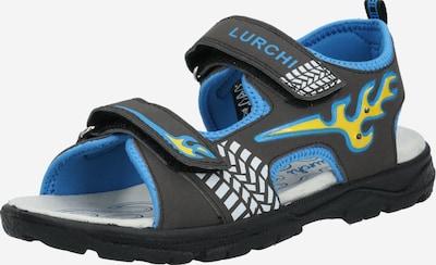 LURCHI Open schoenen 'KUBY' in de kleur Lichtblauw / Zwart, Productweergave