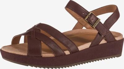 Vionic Komfort-Sandalen 'Violet' in braun, Produktansicht